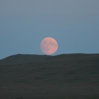Moon - close